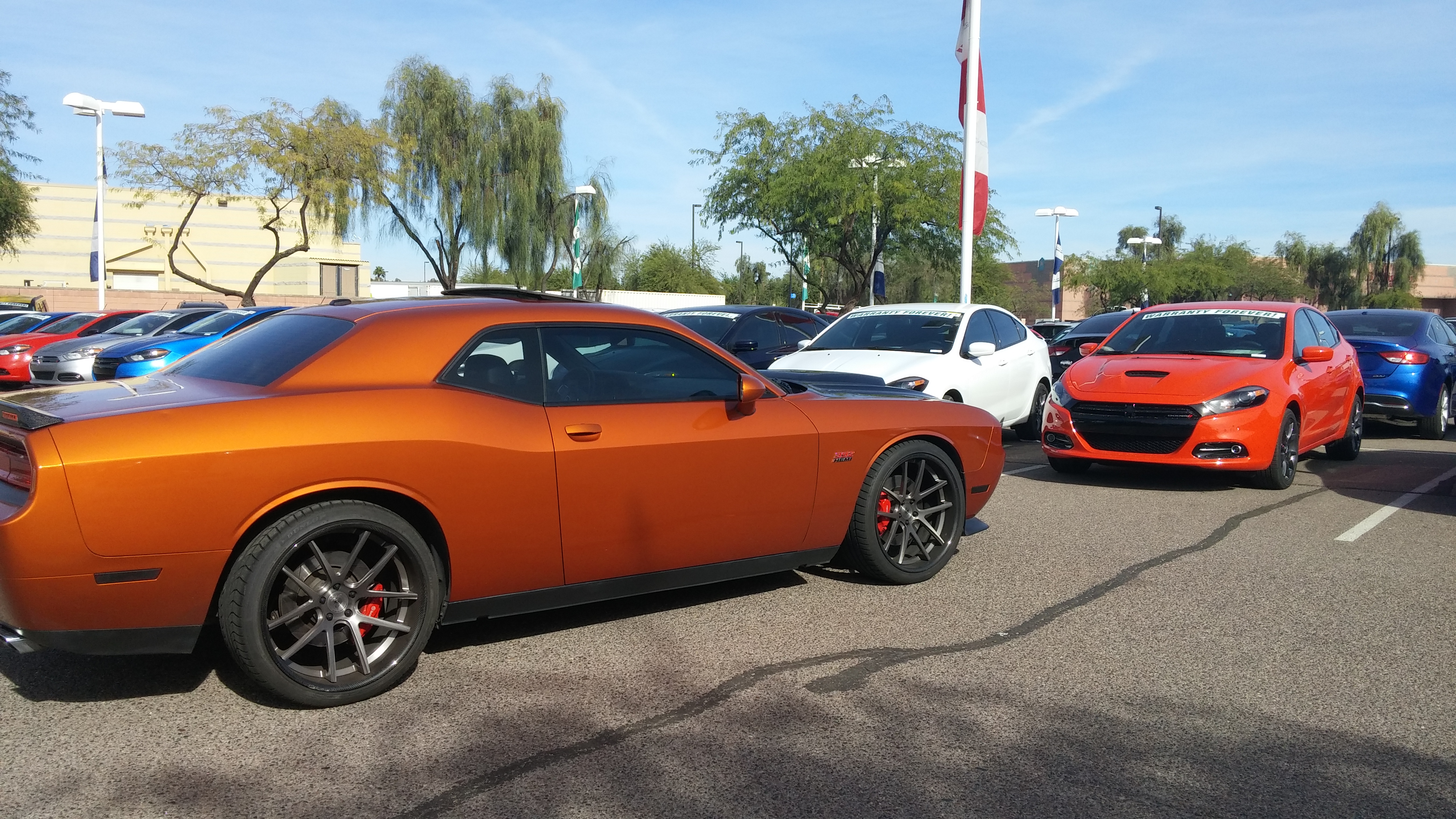 2016my Go Mango Pearl In The Flesh Page 10 Srt