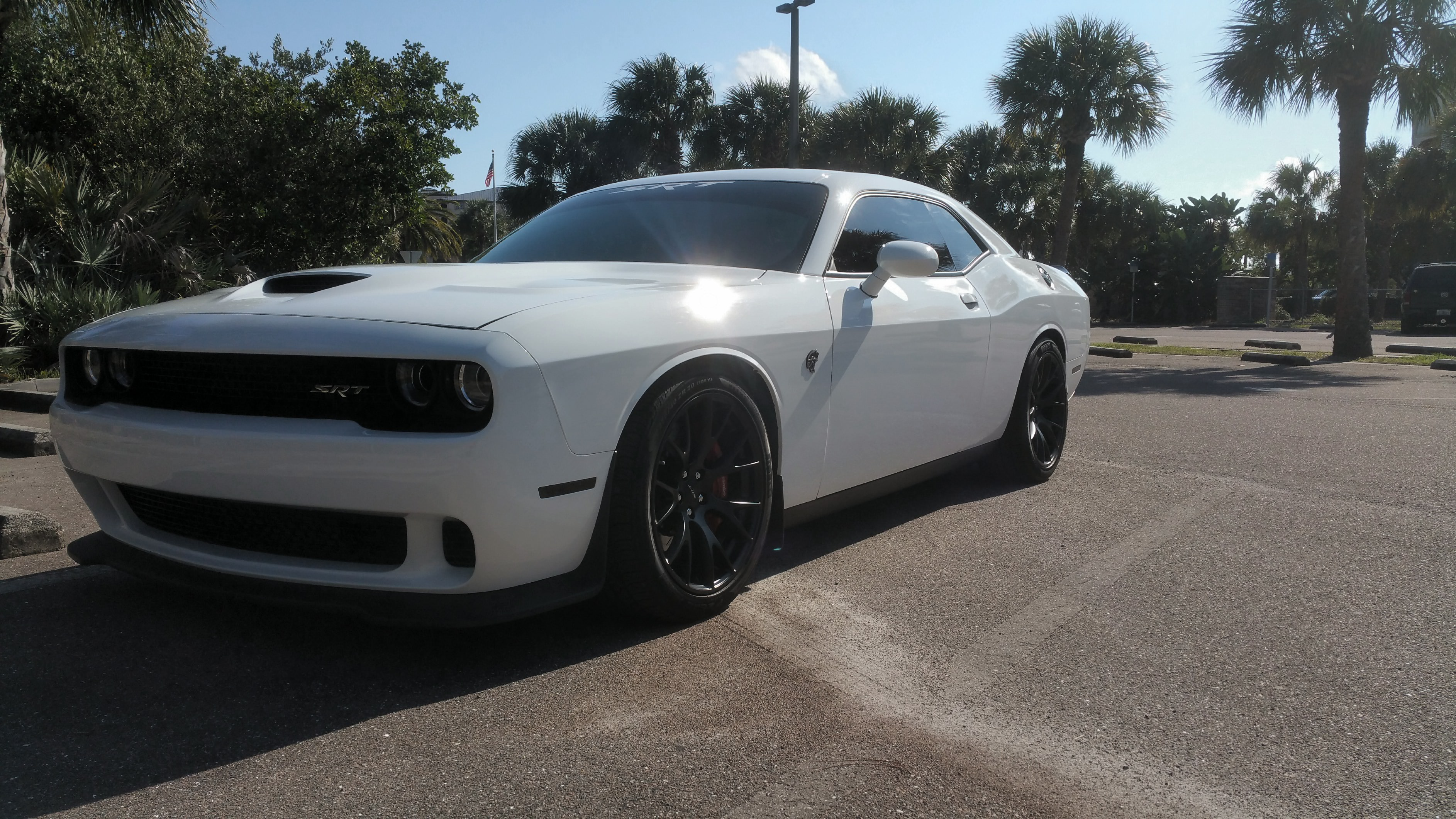 Another Cat Lowered With Mopar Springs1 2 Coil Cut From The Rear 2015 Dodge Srt Charger 10 11 221419jpeg