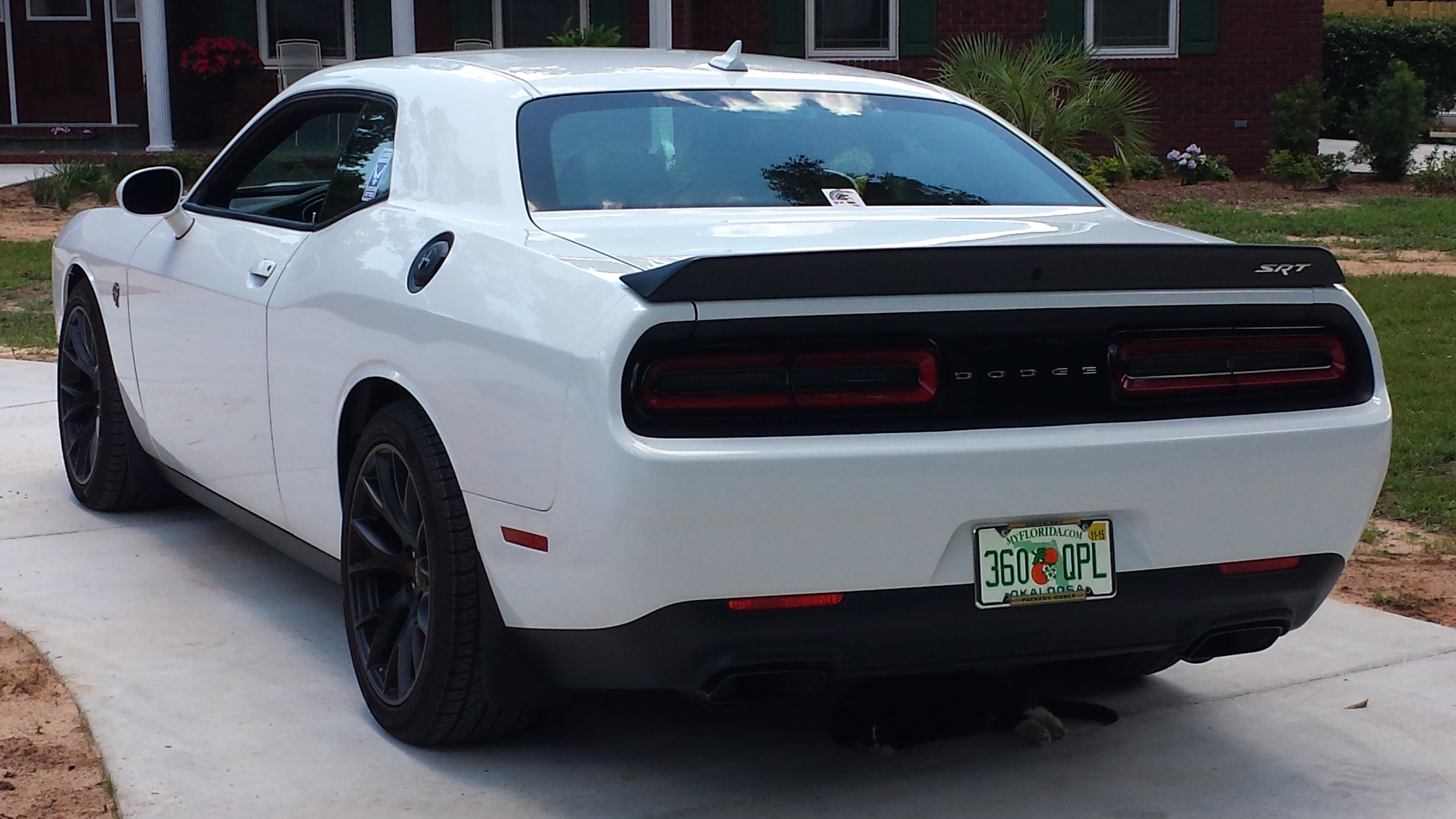 Mud Flaps For Challenger Page 2 Srt Hellcat Forum