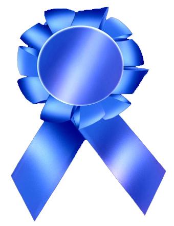 BlueRibbon.jpg