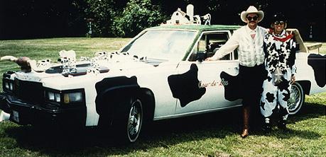 cow.photo.jpg