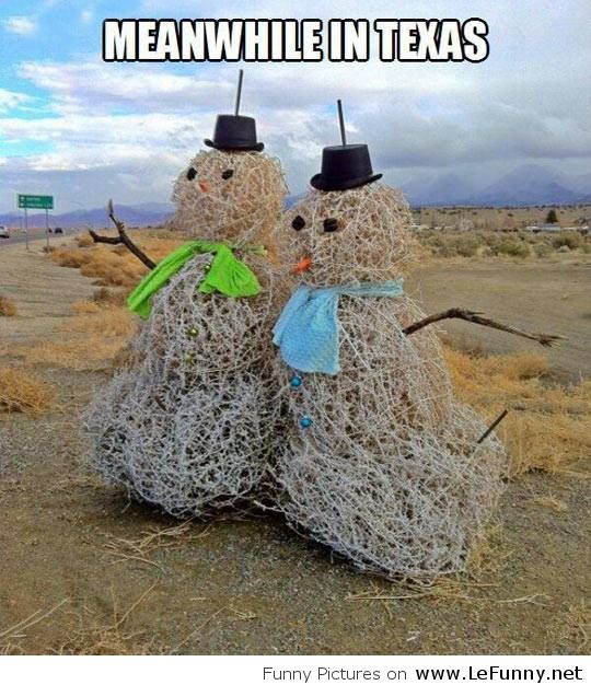 Funny-Winter-in-Texas-Funny-Pictures.jpg