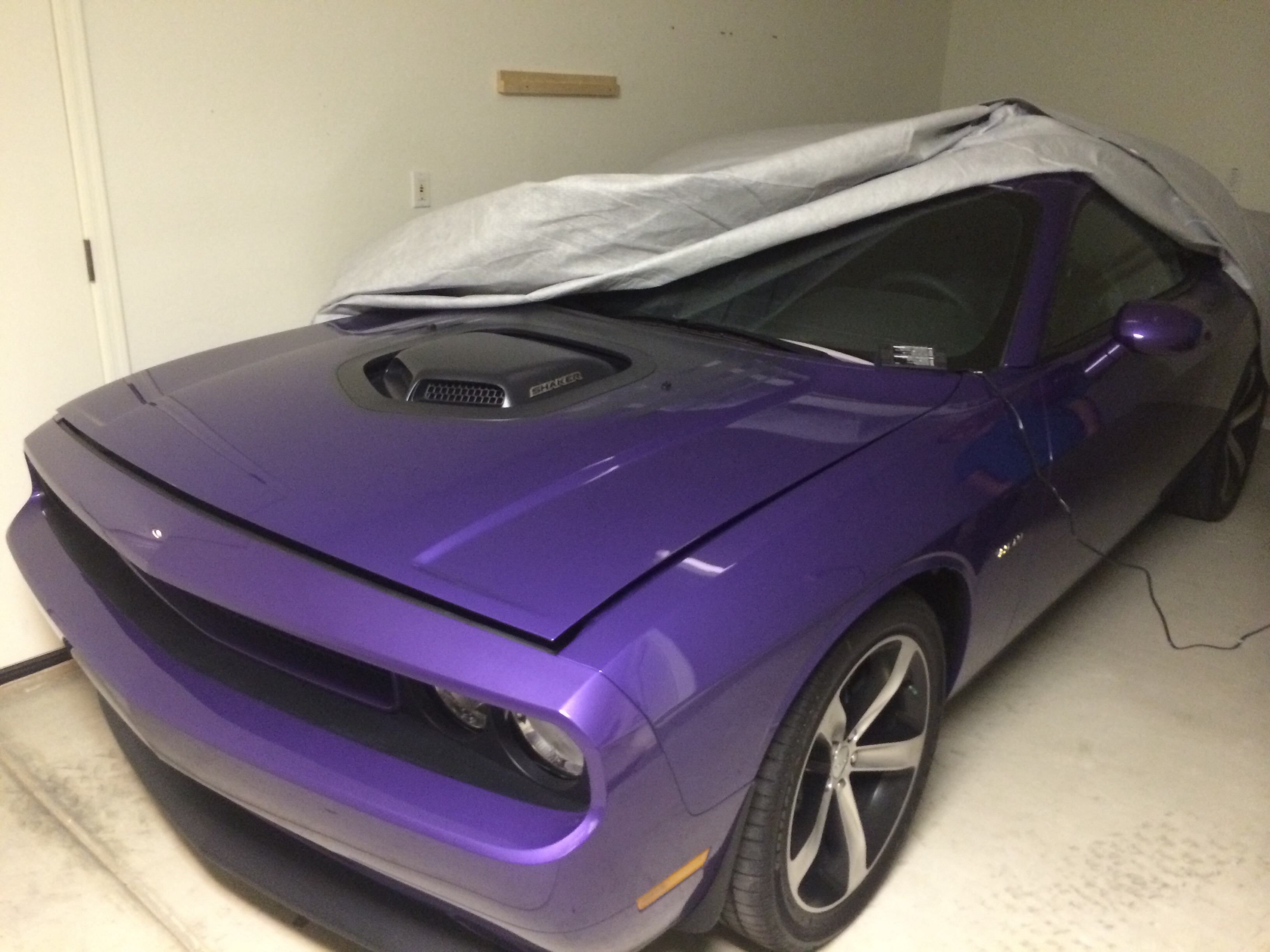 For Sale - 2014 Challenger Shaker Super Rare Plum Crazy Purple #29 ...